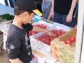 2011food_tomato01